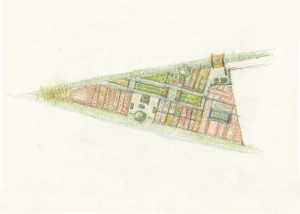 Progetto Orto Sociale